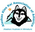 Alaskan Klee Kai Association Of America